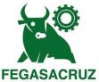 Fegasacruz